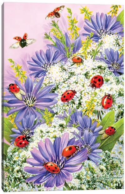 Lady Bugs II Canvas Art Print