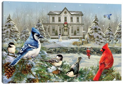 Christmas Birds And House Canvas Art Print