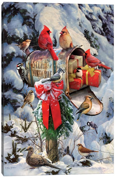 Christmas Birds At Mailbox Canvas Art Print