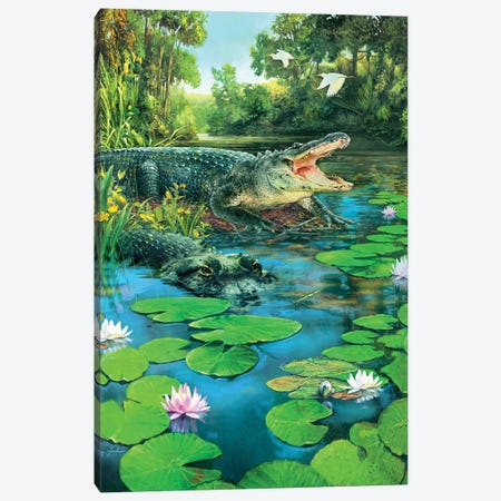 Alligators Canvas Print #GRC1} by Greg & Company Canvas Print