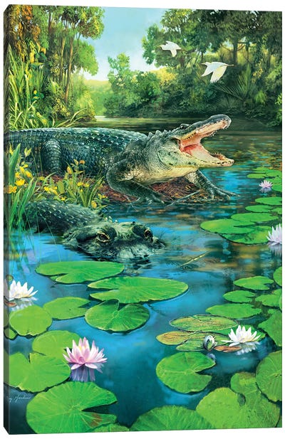 Alligators Canvas Art Print
