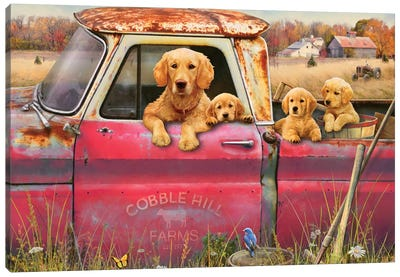 Goldens And Truck Canvas Art Print