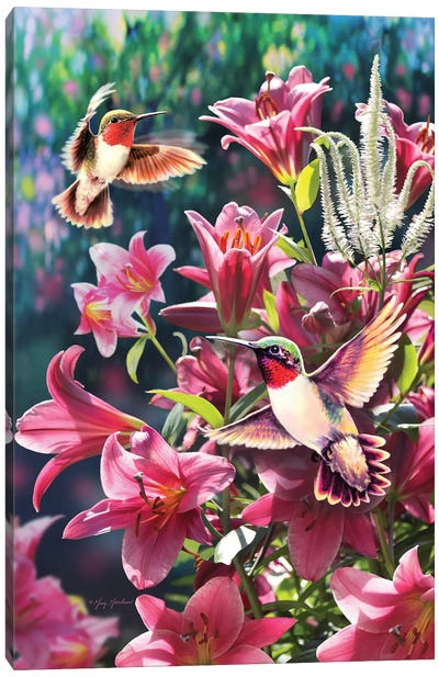 Hummingbird & Lilies Canvas Art Print