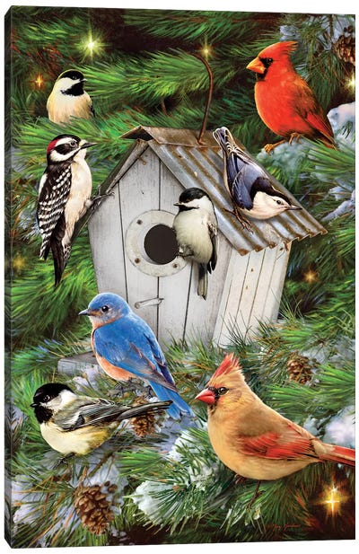 Winter Bird House & Pines Canvas Art Print