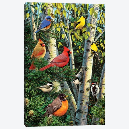 Birds In Birch & Pines Canvas Print #GRC6} by Greg & Company Canvas Wall Art