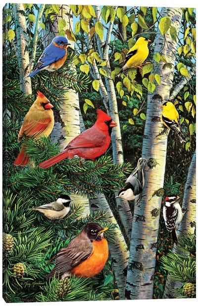 Birds In Birch & Pines Canvas Art Print