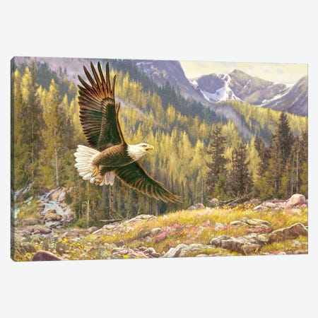 Above The Falls-Eagle Canvas Print #GRC72} by Greg & Company Canvas Print