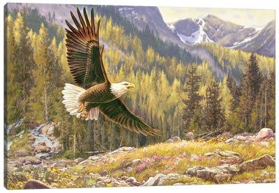 Above The Falls-Eagle Canvas Art Print