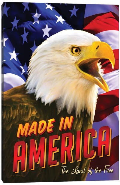 Eagle & Flag Canvas Art Print