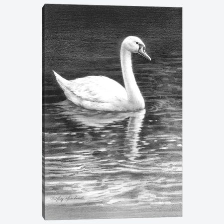 Swan Canvas Print #GRC87} by Greg & Company Art Print