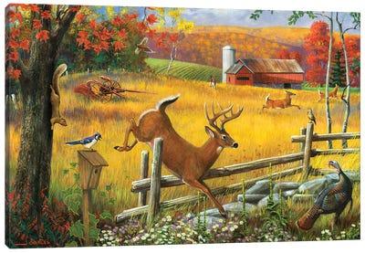Deer Jumping Fence Canvas Art Print