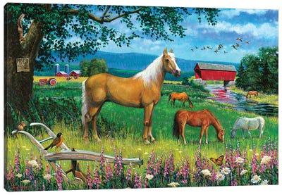 Horses In Field Canvas Art Print