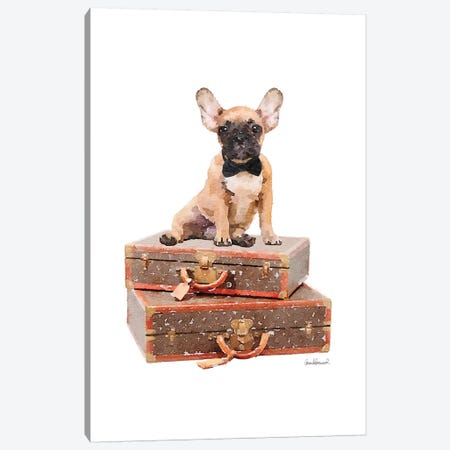 Luggage Fawn Frenchie Canvas Print #GRE235} by Amanda Greenwood Art Print
