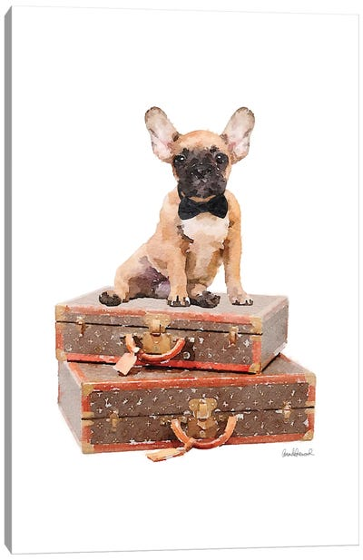 Luggage Fawn Frenchie Canvas Art Print