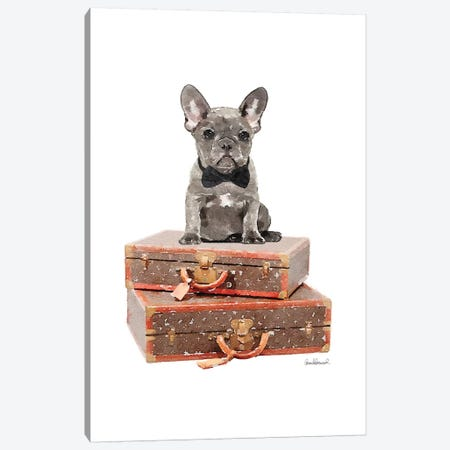 Luggage Grey Frenchie Canvas Print #GRE236} by Amanda Greenwood Canvas Print