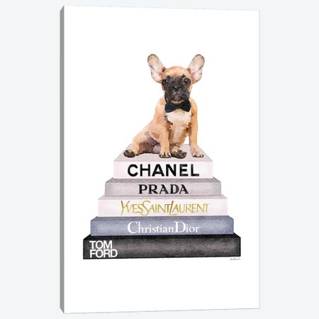 Grey And Blue Bookstack Topped With Fawn Frenchie Canvas Print #GRE249} by Amanda Greenwood Canvas Print
