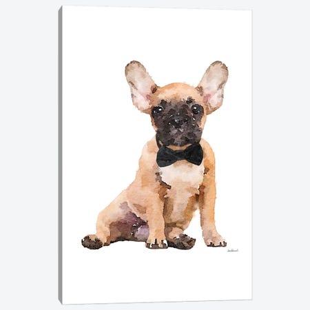 Fawn Frenchie Canvas Print #GRE257} by Amanda Greenwood Canvas Print