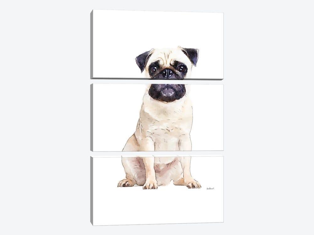 Pug by Amanda Greenwood 3-piece Canvas Artwork