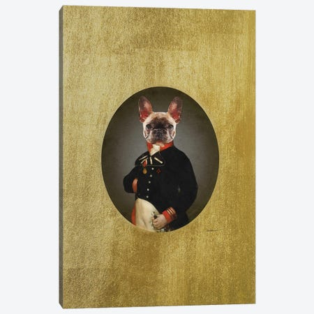 Nelson Portrait Brindle Frenchie Canvas Print #GRE494} by Amanda Greenwood Canvas Print