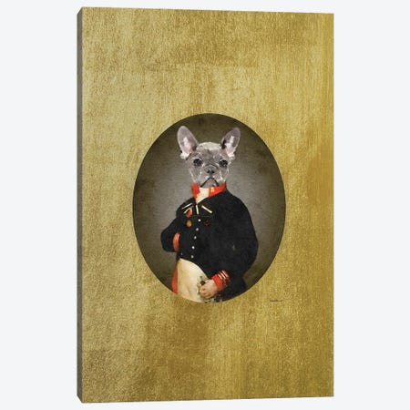Nelson Portrait Grey Frenchie Canvas Print #GRE496} by Amanda Greenwood Canvas Print