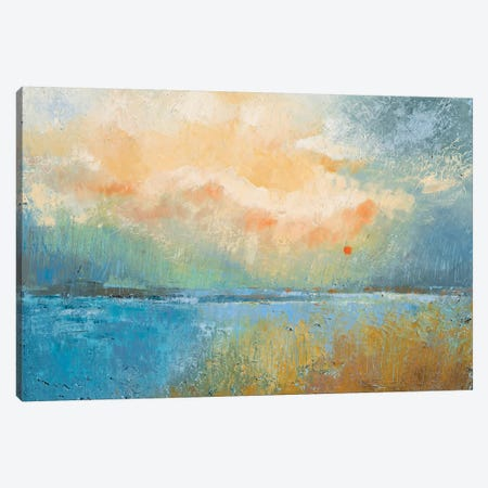 Consolation Canvas Print #GRF6} by Mirta Groffman Canvas Print