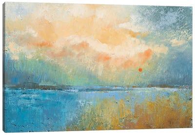 Consolation Canvas Art Print