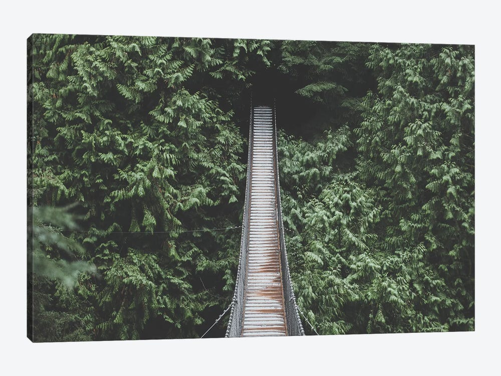 Lynn Valley, Vancouver II by Luke Anthony Gram 1-piece Canvas Print