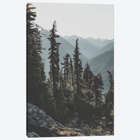 North Cascades National Forest, USA Canvas Print #GRM118} by Luke Anthony Gram Canvas Art