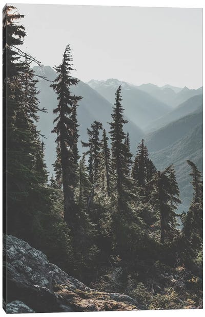 North Cascades National Forest, USA Canvas Art Print