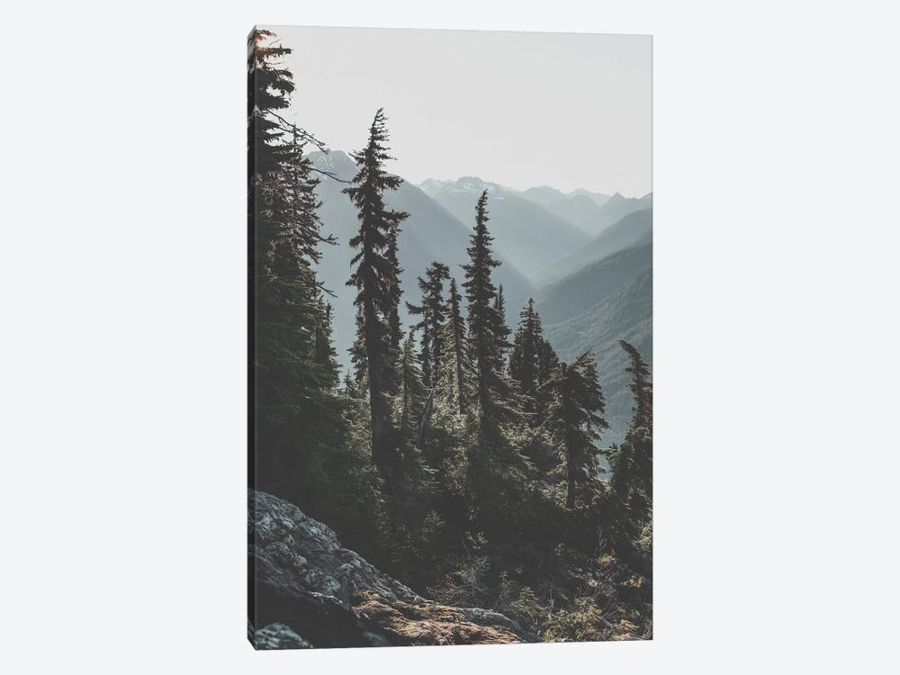 North Cascades National Forest, USA by Luke Anthony Gram 1-piece Canvas Art