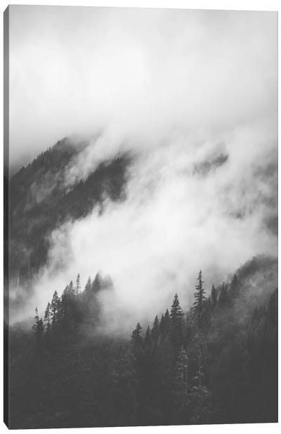 Rolling Fog II Canvas Art Print