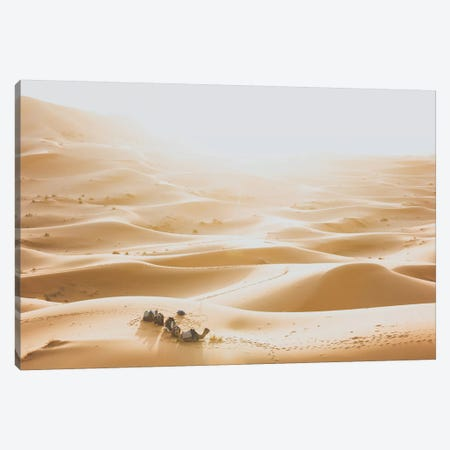 Sahara Desert Canvas Print #GRM134} by Luke Anthony Gram Canvas Art Print