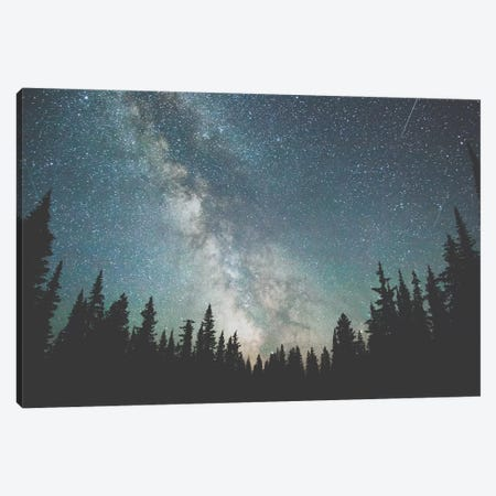 Stars Over The Forest III Canvas Print #GRM139} by Luke Anthony Gram Canvas Artwork