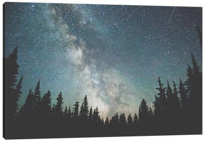 Stars Over The Forest III Canvas Art Print