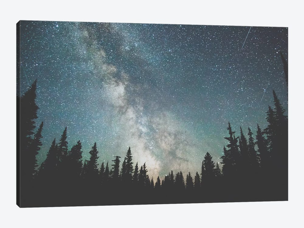 Stars Over The Forest III by Luke Anthony Gram 1-piece Canvas Print