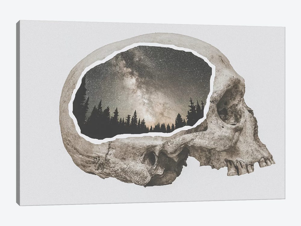 Within Nature I by Luke Anthony Gram 1-piece Canvas Wall Art