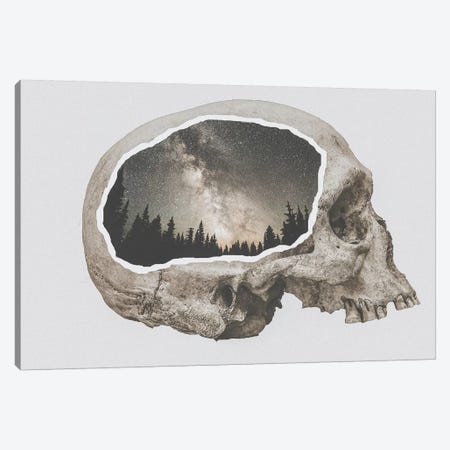 Within Nature I Canvas Print #GRM147} by Luke Anthony Gram Canvas Artwork