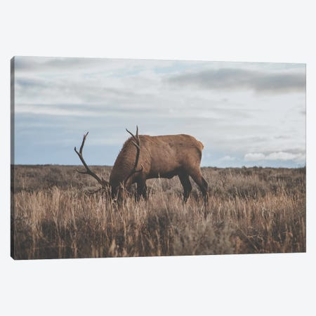 Wyoming, USA Canvas Print #GRM149} by Luke Anthony Gram Canvas Print