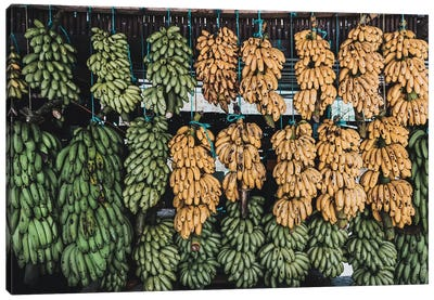 Banana Stand, Guatemala Canvas Art Print