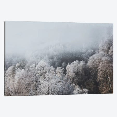 Buchs, Switzerland II Canvas Print #GRM156} by Luke Anthony Gram Canvas Print