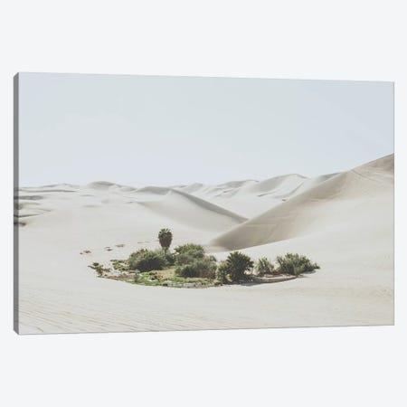 Ica, Peru Canvas Print #GRM169} by Luke Anthony Gram Canvas Art Print