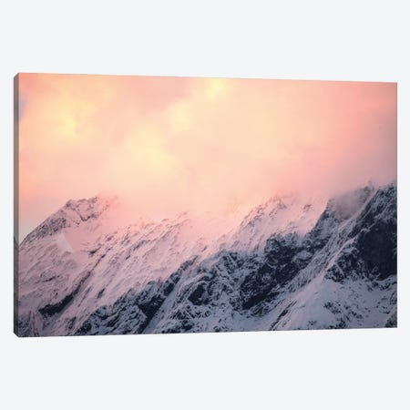 Mount Aspiring National Park, New Zealand II Canvas Print #GRM178} by Luke Anthony Gram Canvas Artwork