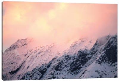 Mount Aspiring National Park, New Zealand II Canvas Art Print