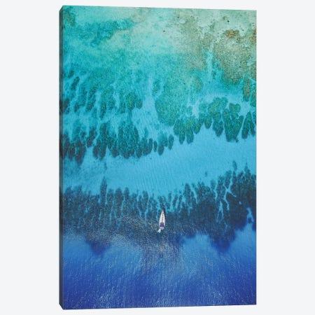 Roatan Island, Honduras II Canvas Print #GRM187} by Luke Anthony Gram Canvas Wall Art