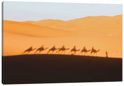 Sahara Desert, Morocco Canvas Art Print