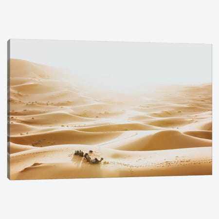 Sahara Desert, Morocco III Canvas Print #GRM192} by Luke Anthony Gram Canvas Art