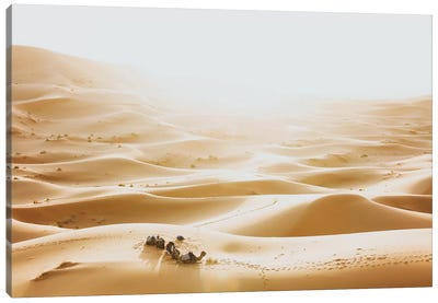 Sahara Desert, Morocco III Canvas Art Print