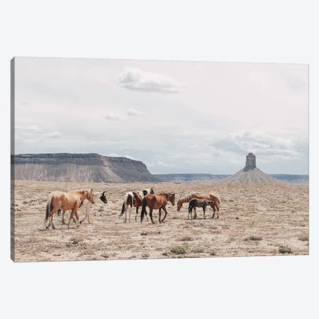Arizona Canvas Print #GRM199} by Luke Anthony Gram Canvas Art