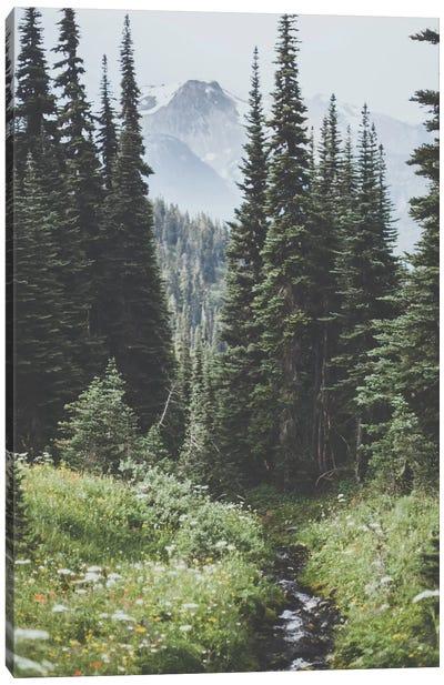 Garibaldi Provincial Park, Canada I Canvas Art Print