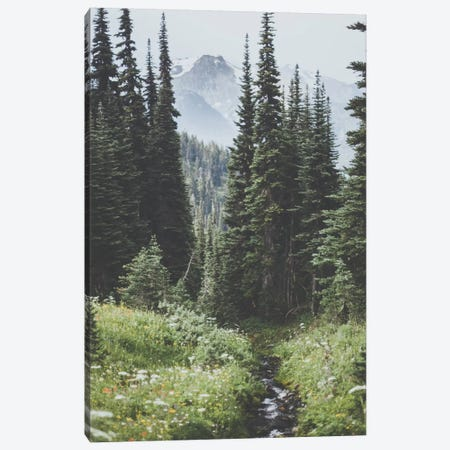 Garibaldi Provincial Park, Canada I Canvas Print #GRM38} by Luke Anthony Gram Canvas Print